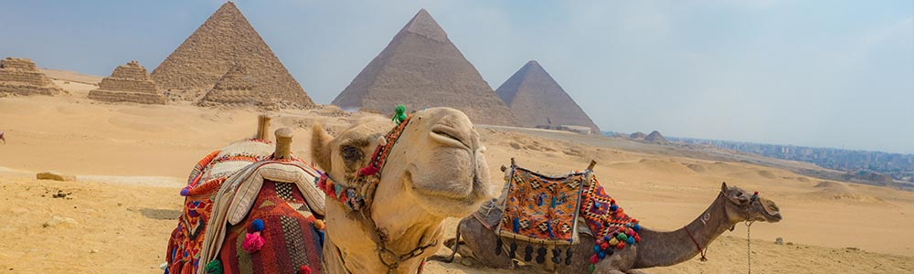 Día 2: Tour a Las Pirámides de Guiza & El Museo Egipcio