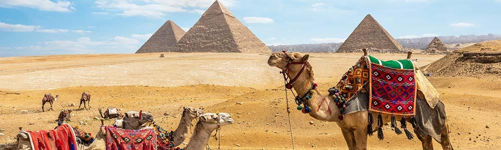 Día 2: Tour a Las Pirámides & El Museo Egipcio.