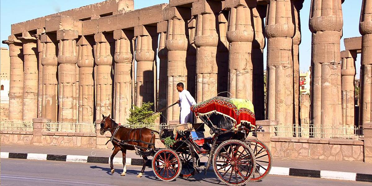 Excursión en Luxor en un Carruaje de Caballos
