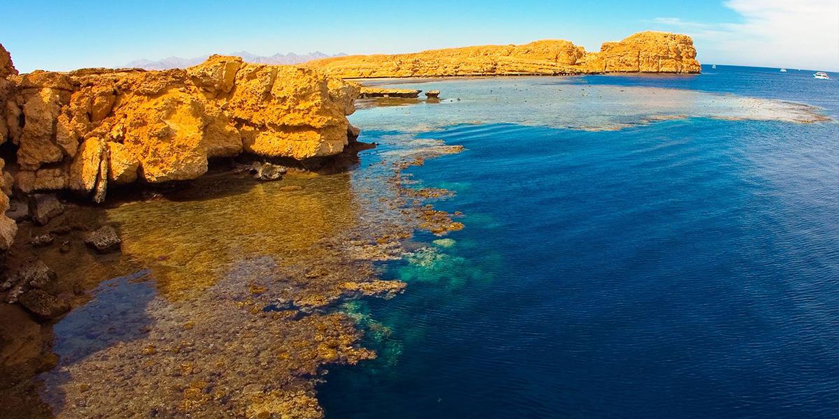 Excursión de Snorkel a Ras Muhammad en un Día