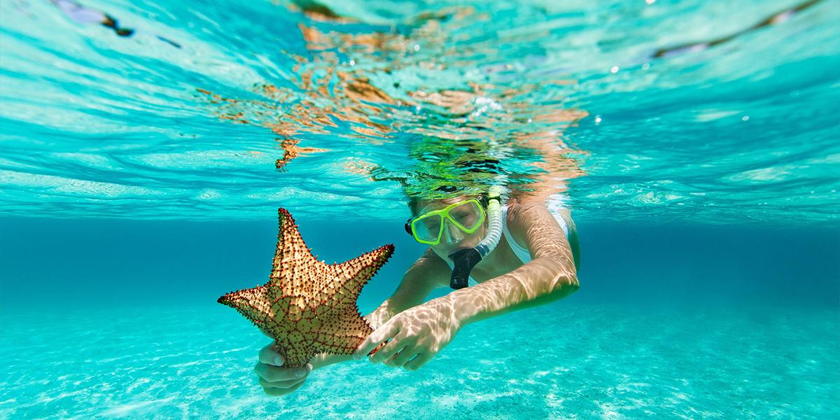 Snorkel desde el Puerto de Safaga