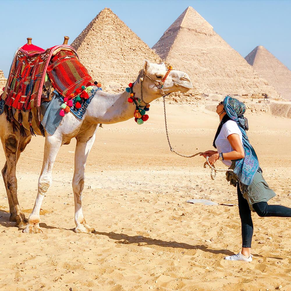 Animales - Egypt Tours Portal
