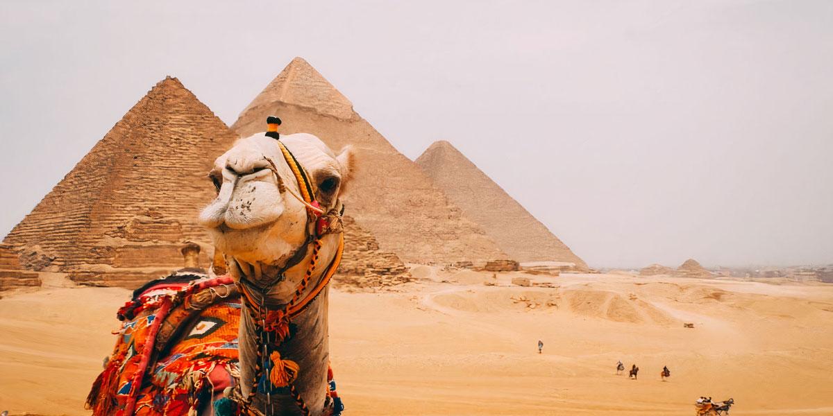 5 días en los Sitios Protegidos por la UNESCO en El Cairo y Fayum