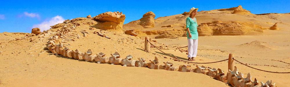 Día 3: Descubre el Desierto de Fayum